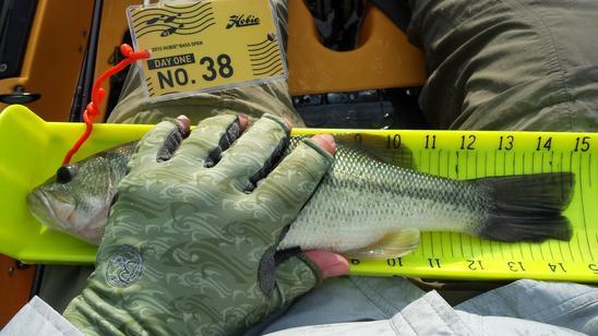 measurefish
